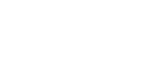 Browns Plains Physiotherapy Logo
